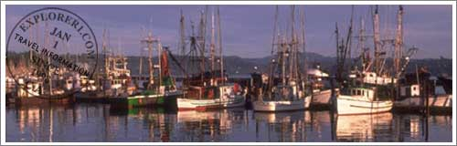 Monterey Fishing Reports and Rentals